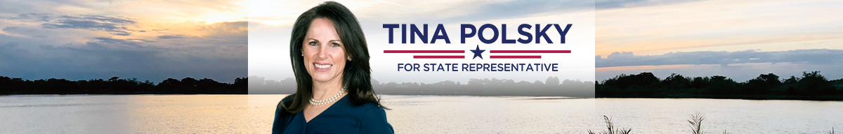 Tina Polsky, Democrat, for State Representative District 81
