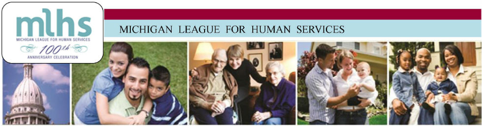 Michigan League for Human Services