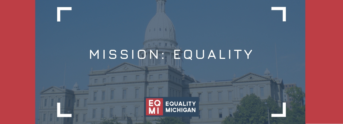 equalitymiaction.org